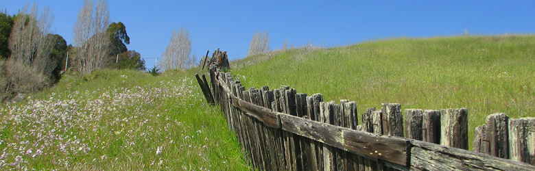 fence in a field